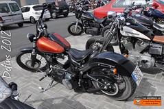Dofins 2012: Harley-Davidson Blackline