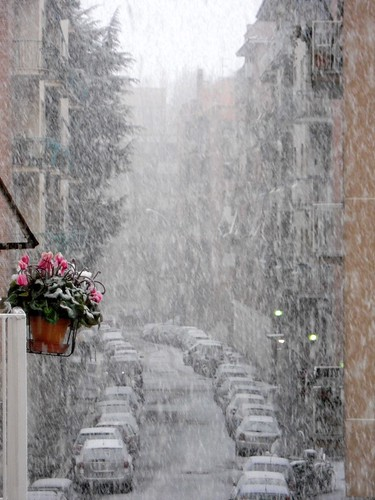 Roma - Ora nevica! Snowing!