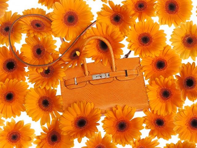 mini-kelly-birkin-hermes-primavera-2012-07