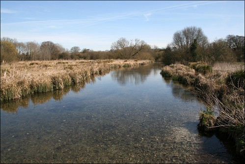 The River Test near Longparish