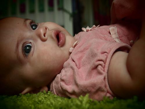 Revi, five months