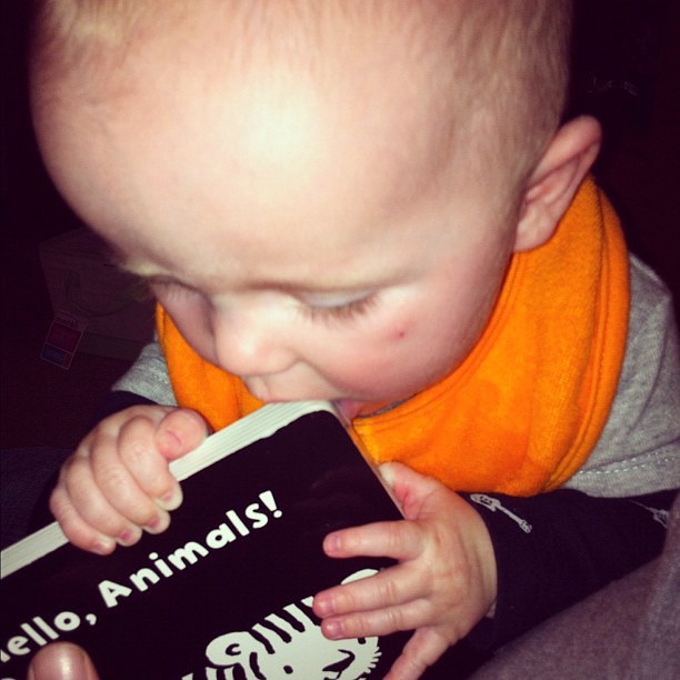 He likes his new book.