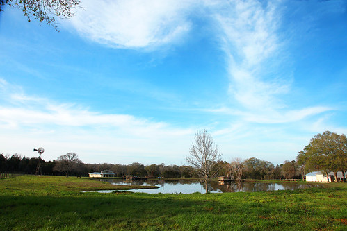 house windmill grass dock texas farm canoes np bellville farmpond ttrees austincounty wyojones
