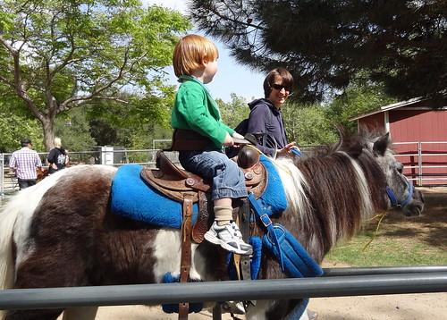 Rebecca Leads a Pony Named Dan