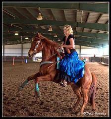 Cowboy Mounted Shootout, FL - 2012