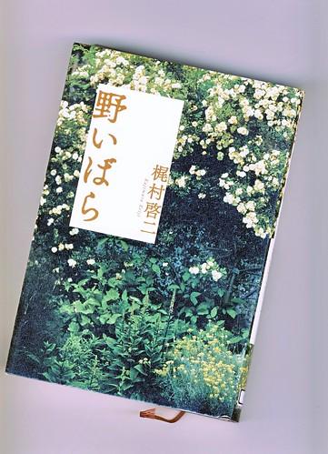 「野いばら」 梶村啓二 by Poran111