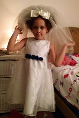 Dress-Veil