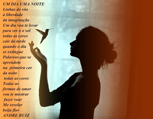 UM DIA UMA NOITE by amigos do poeta