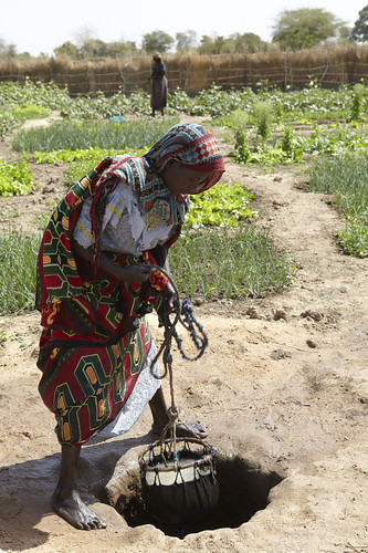 Chad Food Crisis: Drawing water from the well
