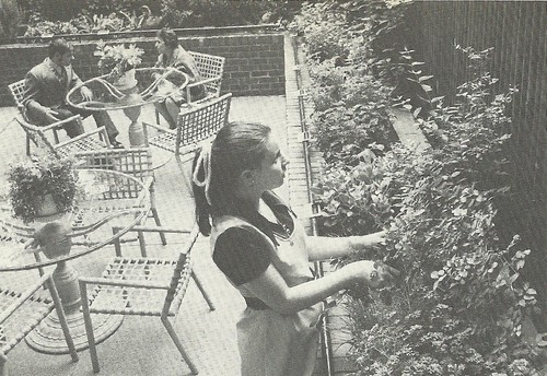 1972 Tending Plants at the Jewish Braile Institute, NYC, NY (Barton Silverman, New York Times)