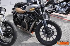 Dofins 2012: Harley-Davidson Sportster Cafe Racer