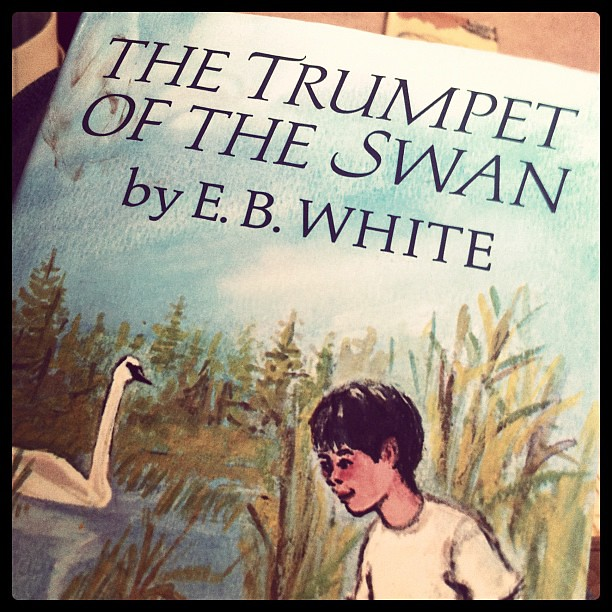 Current read aloud.