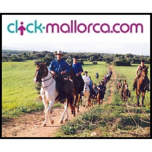 rancho grande horse riding mallorca (14)