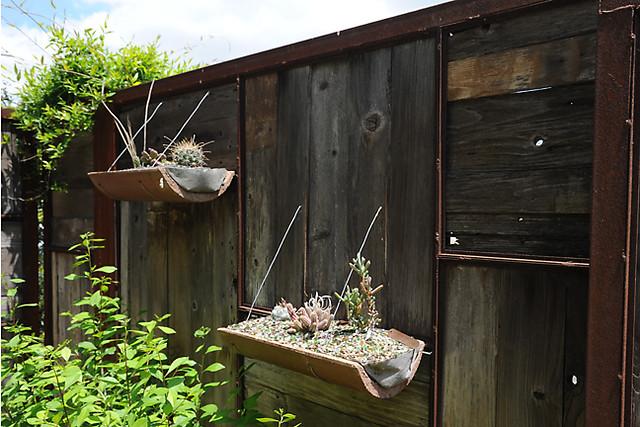 Austin Neal's garden