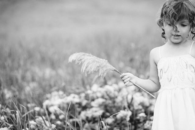 ella fields-7