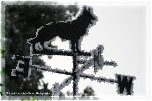 Our Weathervane Edged with Icy Snowflakes