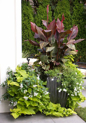 Lushly planted containers add color to the home.
