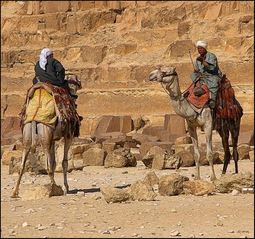 portrait people geotagged golden gente retrato egypt olympus egipto gent giza egipte retrat egyptians aljīzah specialtouch quimg quimgranell joaquimgranell mygearandme afcastelló obresdart
