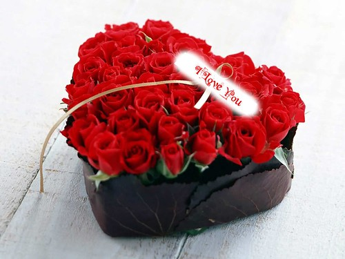 6855705837 33ca5b3496 Celebrate Valentines Day with Symbol of Love   The RED ROSES