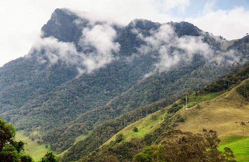 Colombia - Triángulo del Café 11