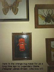 orangebug
