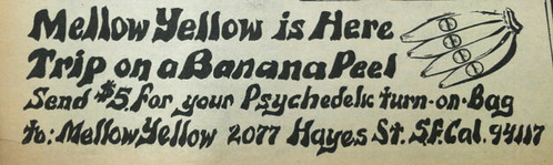 Mellow Yellow ad EVO April 1-15, 1967