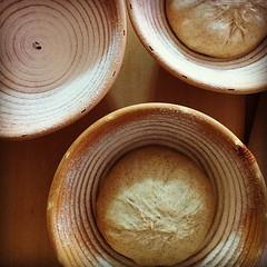 発酵カゴには粉をふって。 パン生地をひとつずつ。  #パン中継