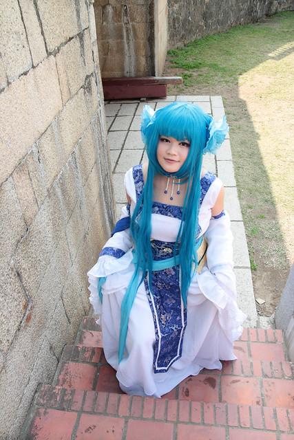 仙三-藍龍葵