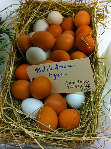 MacLachlan farm eggs