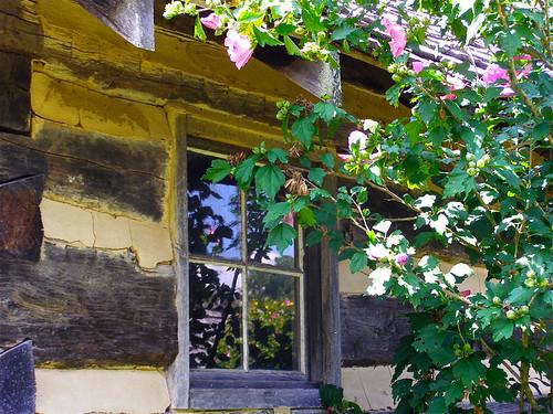 park reflection window public nc historic logcabin restored althea preservation nonprofit dillingham 2x2 historichouse barnardsville bigivy carsoncabin