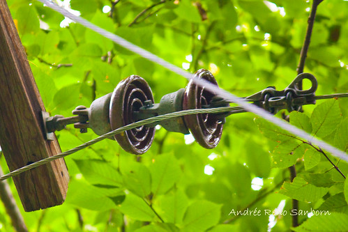 Insulators on the power lines-1.jpg