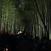 Arashiyama 嵐山 - 13