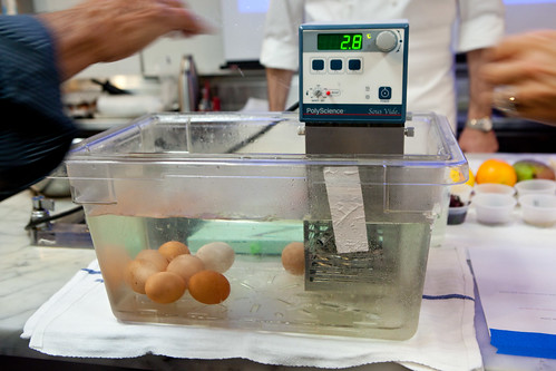 Placing the eggs into the immersion circulator