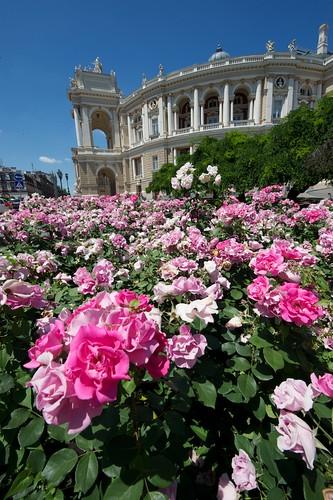 2010-06-18 Odessa-11