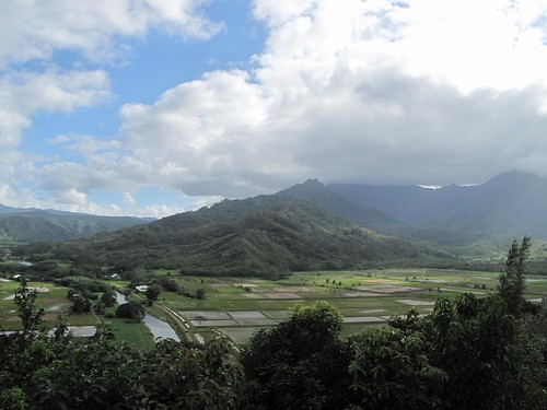 Hanalei Lookout, home of taro