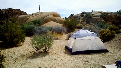 Joshua tree campground