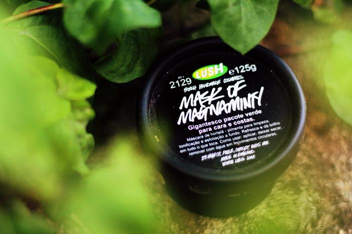 Review Lush Mask of Magnaminty, Lush Fresh Face Mask, Lush La Grande Mentheuse