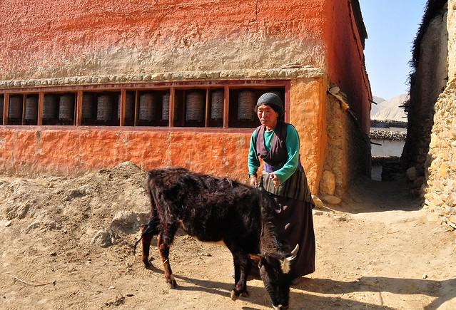 Nepal-Mustang-Ghami village (Explore)