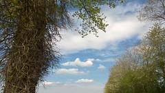 28. Maisoncelles-Pelvey - Photo of Aunay-sur-Odon