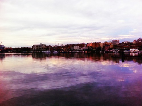Looking out across the inner harbour