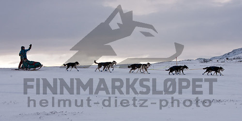 Finnmarkslopet: Nina Skramstad at Karlebotn