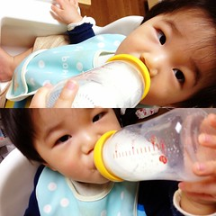 今日の片手哺乳瓶飲みとらちゃん(2012/3/15)