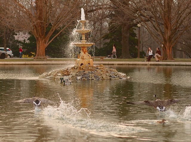 Tower Grove Park, in Saint Louis, Missouri, USA - fountain with flying geese