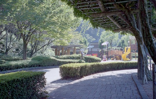 蓮華寺池公園_001