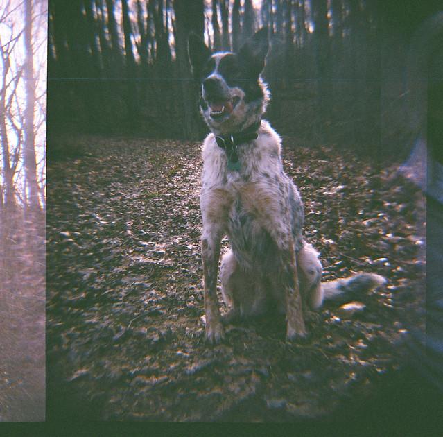 ona woods