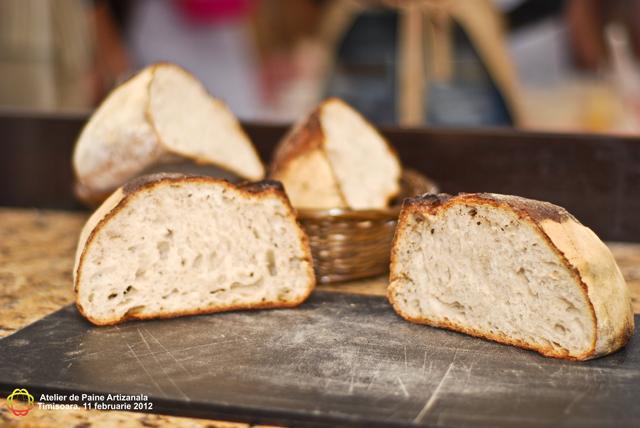atelier paine poza 137