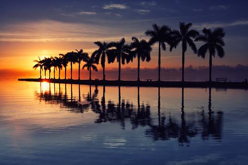 reflection sunrise palms cloudy miami 305 deeringestate