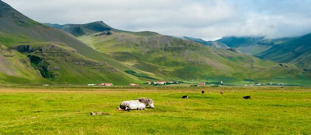 Icelandic Coastal Landscape