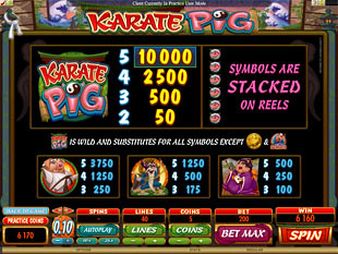 free Karate Pig slot payout