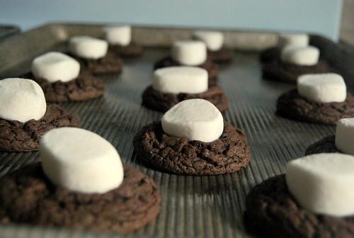 Cookies - Pre-Bake